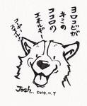 J010.jpg